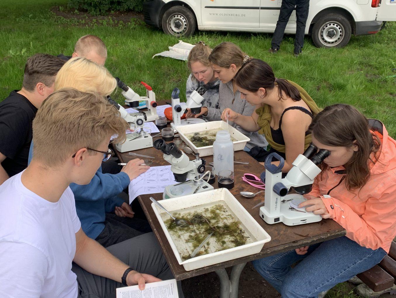 An die Kescher, fertig, los! – Biologie-Grundkurs untersucht den Kleinen Bornhorster See